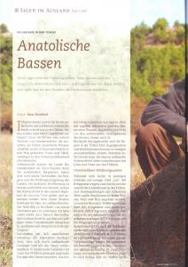JAMG Anatolische Bassen UJ_Seite_1